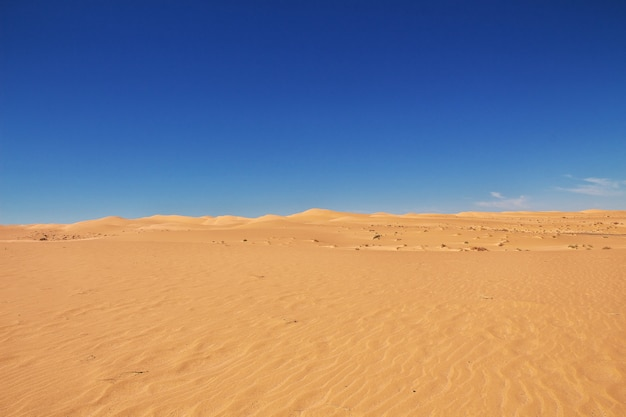 Dunes in the sahara desert in the heart of africa