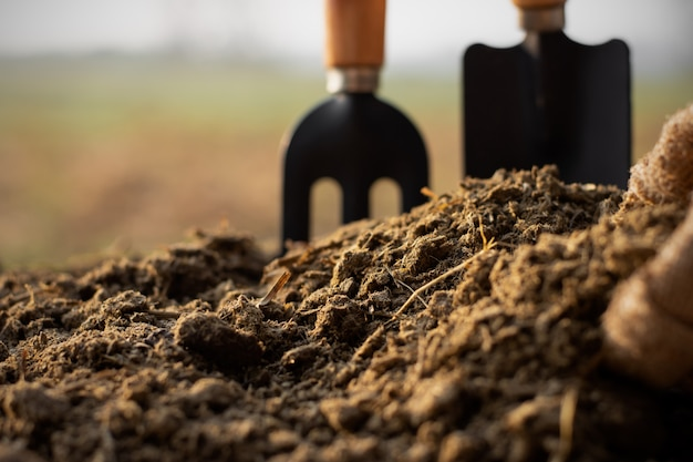 Dung or manure for planting.