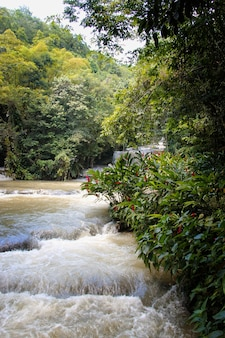 Dunns's river falls in giamaica nel dunn's river falls park