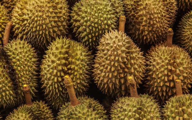 Durian fruit on market shelf