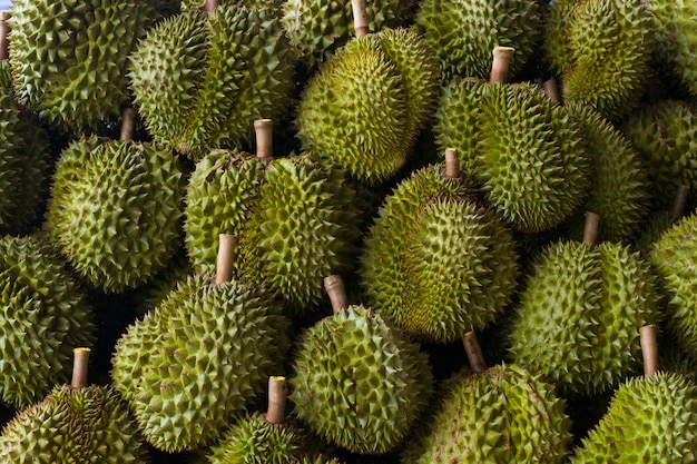 Durian with green thorns, beautifully laid out and with natural light.