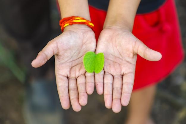 幸せなdussehra、緑の葉を手に