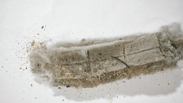 로봇 진공 청소기의 투명한 플라스틱 용기에서 나오는 먼지와 쓰레기는 밝은 조명이 있는 방에서 흰색 표면으로