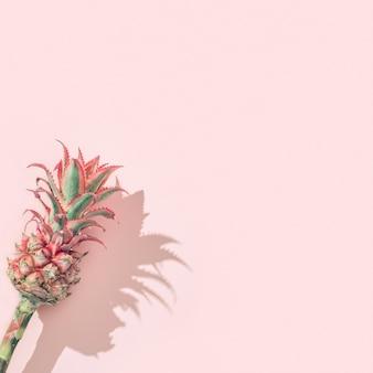 ピンクの紙の背景にドワーフ観賞用パイナップルミニピンクの花茎ごとに1つの熱帯の花。