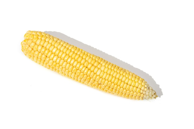 Кукуруза початка изолированная на белой предпосылке. сырая кукуруза