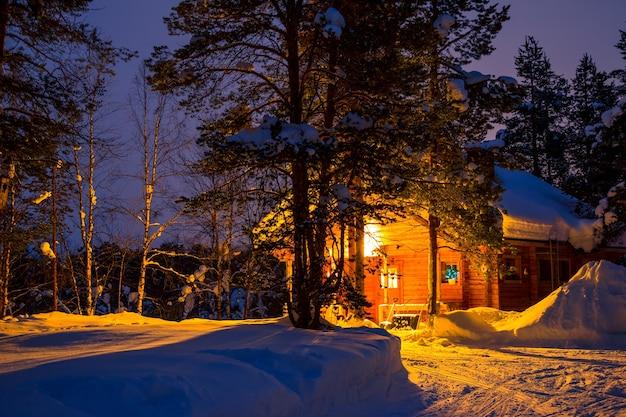 冬の森の早朝
