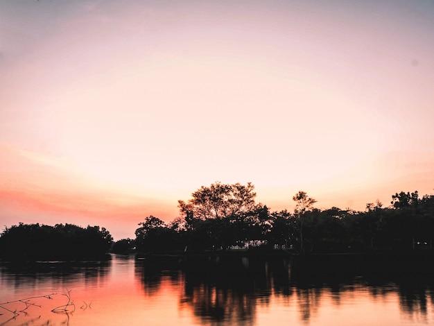 Ранним утром на реке озеро силуэт лесной рефекции на воде