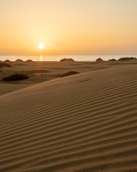 Early morning sunrise in the dunes of maspalomas
