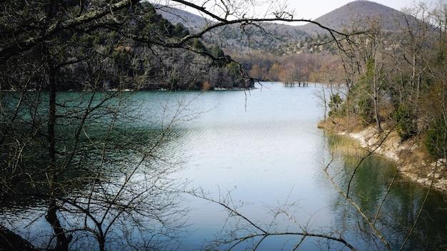 Ранняя весна. вдоль берегов горного полноводного озера деревья просыпаются после зимы и стоят в воде.