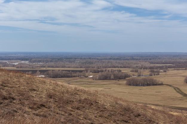 숲 근처 필드에서 이른 봄 풍경
