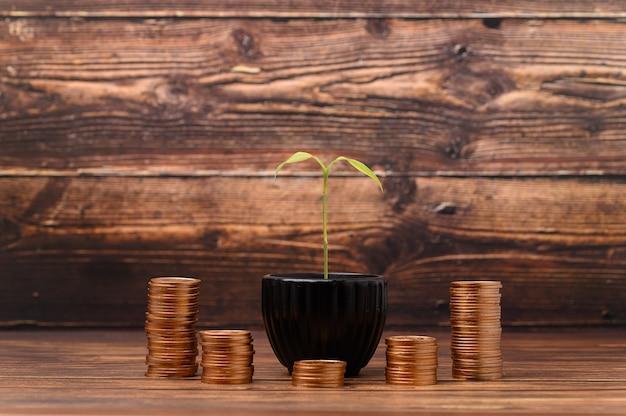 Earning money saving money investing stocks taxes
