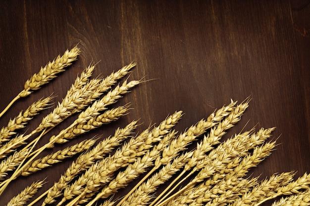 熟した小麦の穂