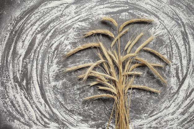 회색 배경에 밀과 밀가루의 귀