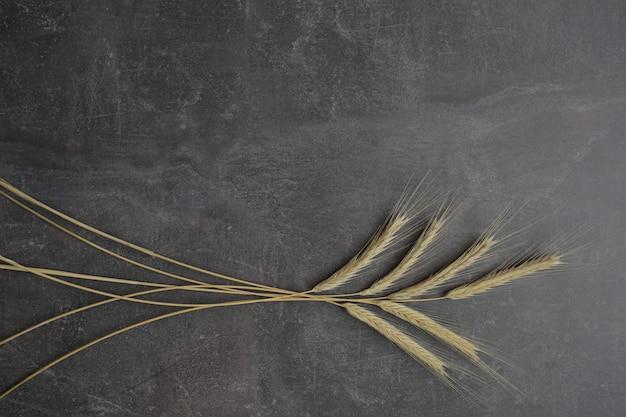 Колосья пшеницы на сером фоне. вид сверху, зерно.