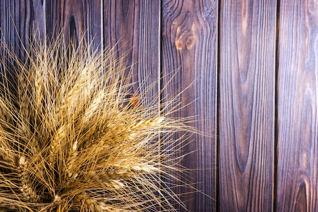 Колосья пшеницы на деревянном фоне концепция сбора урожая