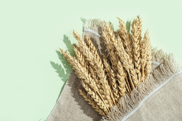 Ears of wheat close up on pastel green and on sackcloth
