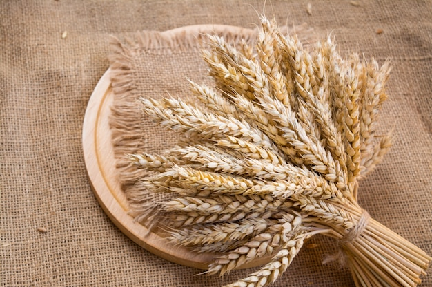 Ears of wheat on an old linen burlap