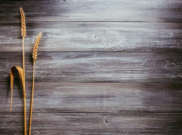 Ears of wheat on wooden