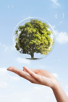 Earth day campaign hand showing tree in a bubble media mix