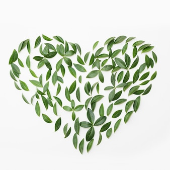 Earth day. floral pattern of green leaves as heart on white.