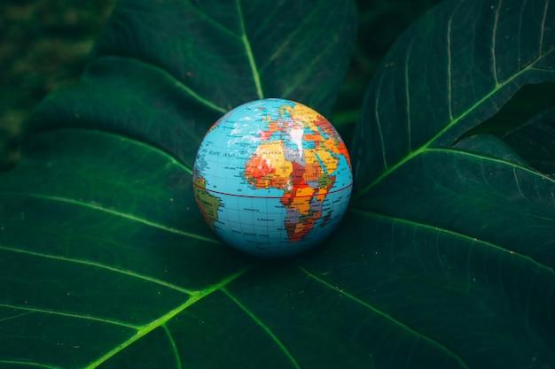 Earth globe on green tropical leaves