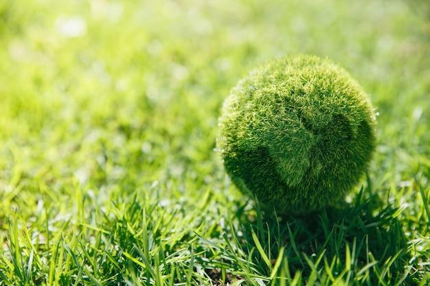 아침, 생태 및 세계 지속 가능한 환경 개념에 정원에서 지구 잔디.