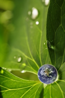 Earth in water drop reflection on green leaf, elements of this image furnished by nasa