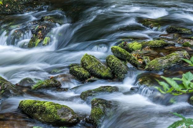 이스트 린 강