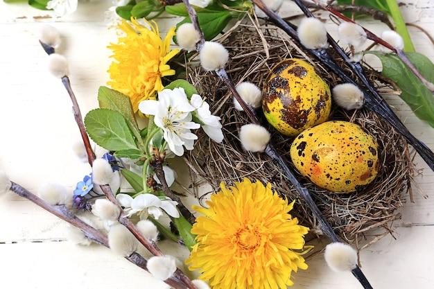 Пасхальное фоновое гнездо с расписными яйцами, цветами ивы, одуванчиками на белом деревянном фоне, вид сверху