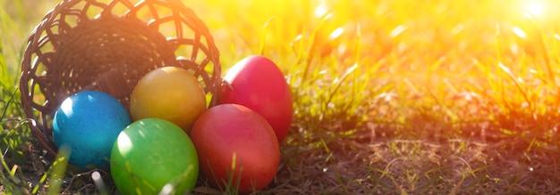 Пасхальный баннер с крашеными крашеными яйцами в корзине на траве
