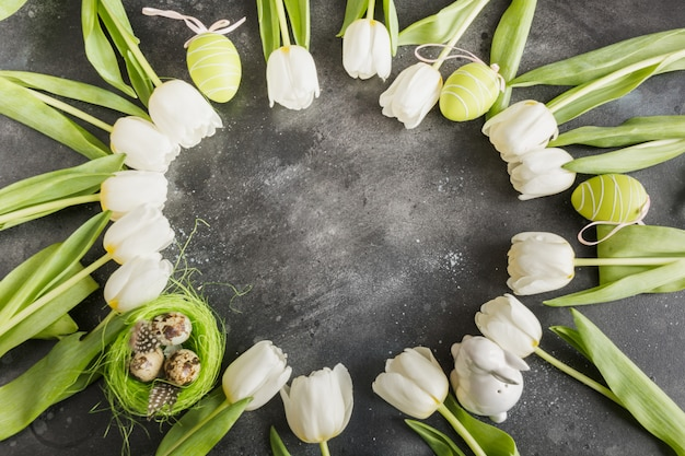 Easter. border of white tulips, eggs, nest on gray. top view with copy space.
