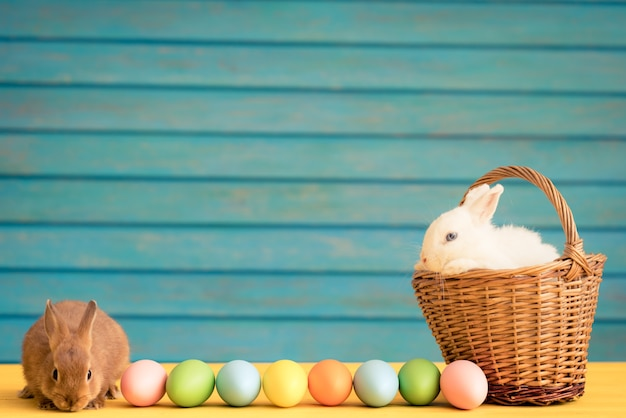 イースターバニーと卵のバスケット