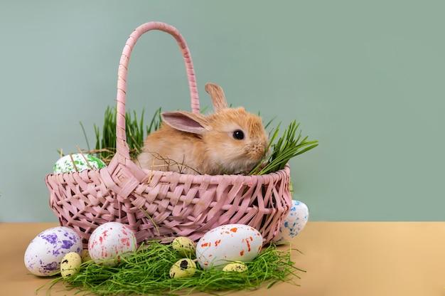 イースターカード-イースターエッグが描かれたピンクの籐のバスケットに入った小さな装飾的な生姜のウサギ。