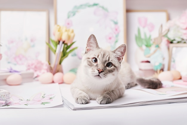 Easter cat with eggs and flowers. gray kitten sitting on table. spring greeting card happy easter. easter decor. watercolor spring paintings. designer and artist's workplace. creative space.