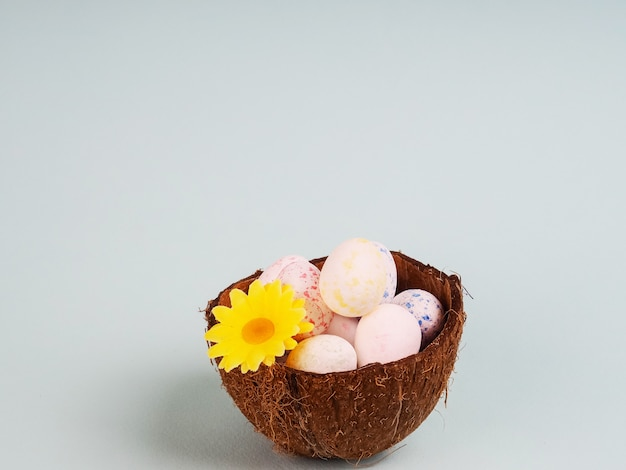 Easter celebration card - selective focus of natural coloured easter eggs eggs in coconut shell, gypsophila flowers, pink bacground, rustic style