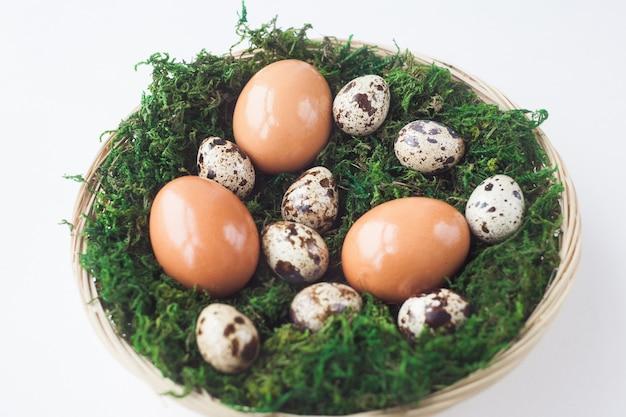 Easter.chicken卵とウズラの卵は、白い背景に、上面にコケが付いているバスケットにあります。春、4月。