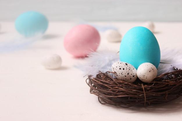 컬러 배경에 페인트 계란과 깃털의 부활절 구성 프리미엄 사진