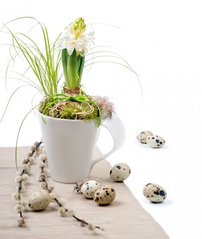 Easter composition with white hyacinth in white mug