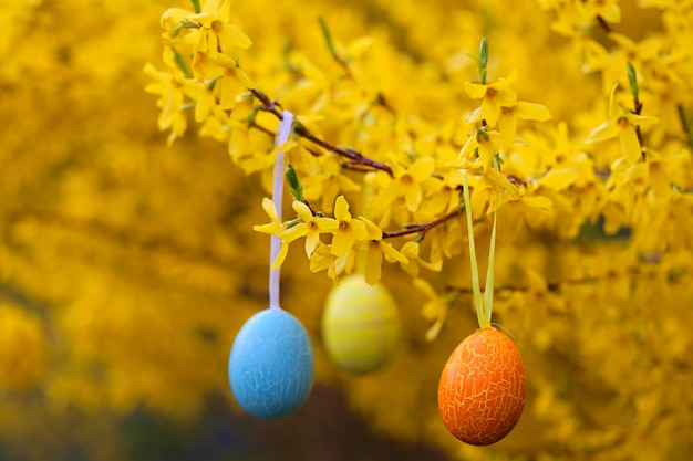 Easter concept. spring flowering branches and easter eggs. three easter eggs on a yellow blooming background