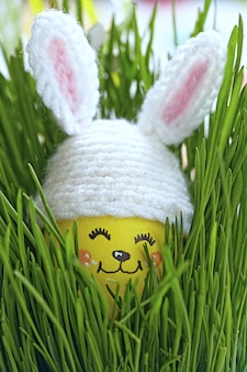 Easter decoration with cute egg in bunny hat