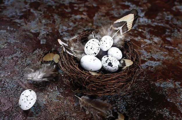 暗い木製のテーブルの上の巣のイースター装飾ウズラの卵