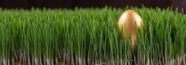 イースターエッグハント。イースターホリデー。草の中のイースターエッグを探しています。春の草春の休日イースターの背景に金色に塗られた卵。バナー