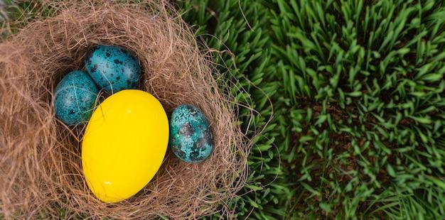 イースターエッグハント。イースターホリデー。草の中のイースターエッグを探しています。春の草の上の巣にいくつかのペイントされたイースターエッグ。春の休日の背景。バナー