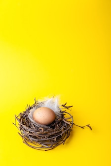Пасхальное яйцо в гнезде на желтом фоне