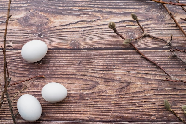 부활절 달걀과 버드 나무 잔 가지