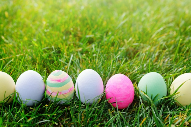 Easter eggs in green grass, easter concept