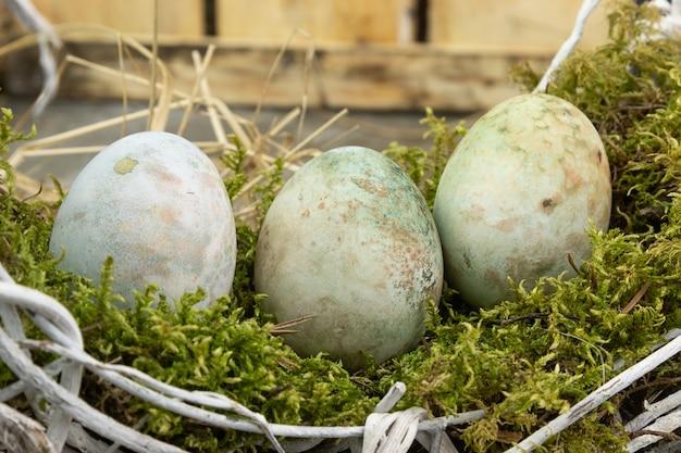 이끼에 부활절 달걀 나무 테이블에 둥지.