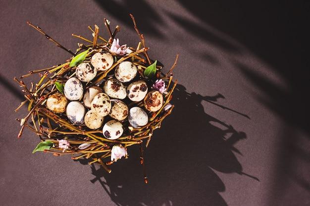 부활절 상위 뷰 복사 공간의 검정색 배경 최소한의 개념에 둥지에서 부활절 달걀