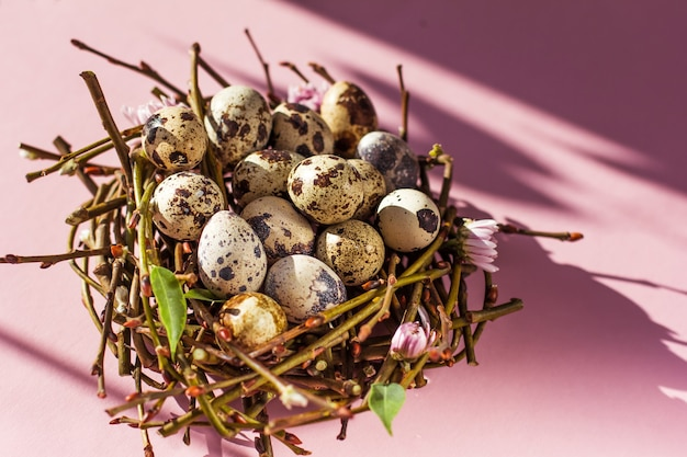 분홍색 배경에 둥지에서 부활절 달걀 부활절의 최소한의 개념입니다. 상위 뷰 복사 공간