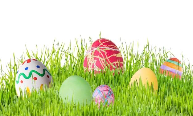 Пасхальные яйца в траве, изолированные на белом фоне, для вашего дизайна